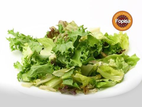 Grüner Salat Fopisa Online Bestellen